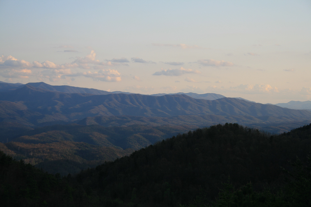 Tract 30r1 Chilhowee Mountain Tr - Photo 13