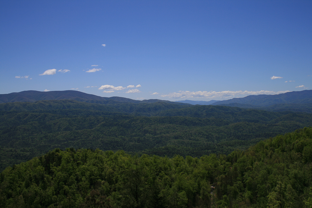 Tract 30r1 Chilhowee Mountain Tr - Photo 14