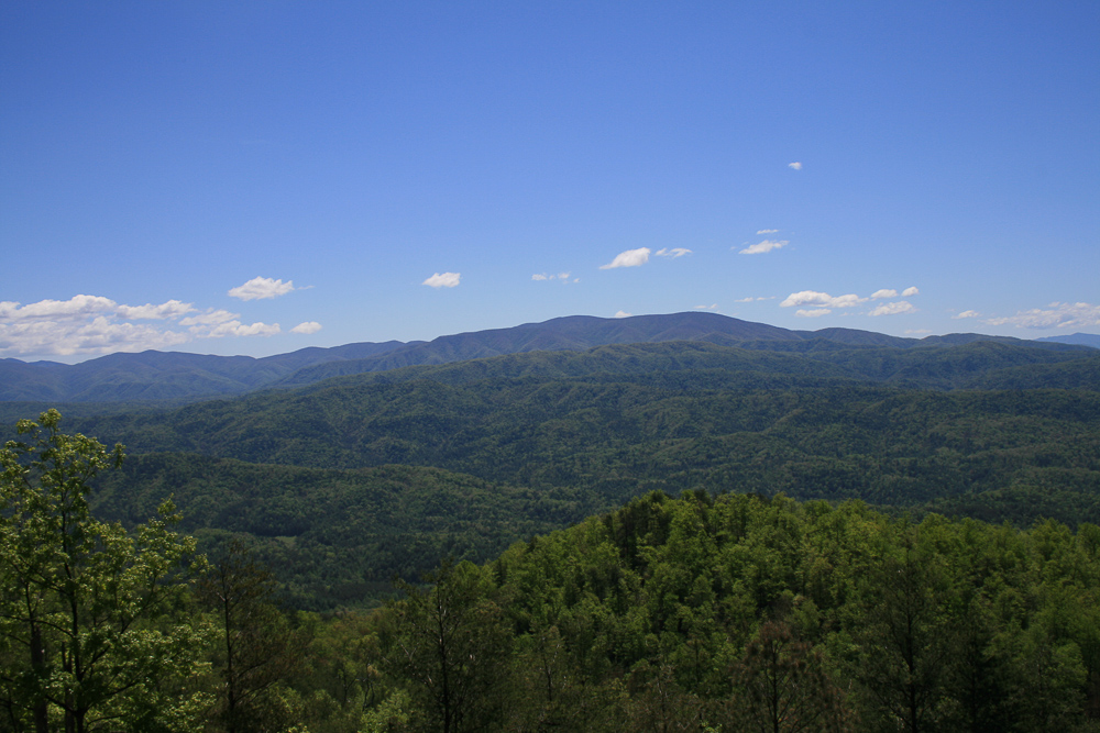 Tract 30r1 Chilhowee Mountain Tr - Photo 15