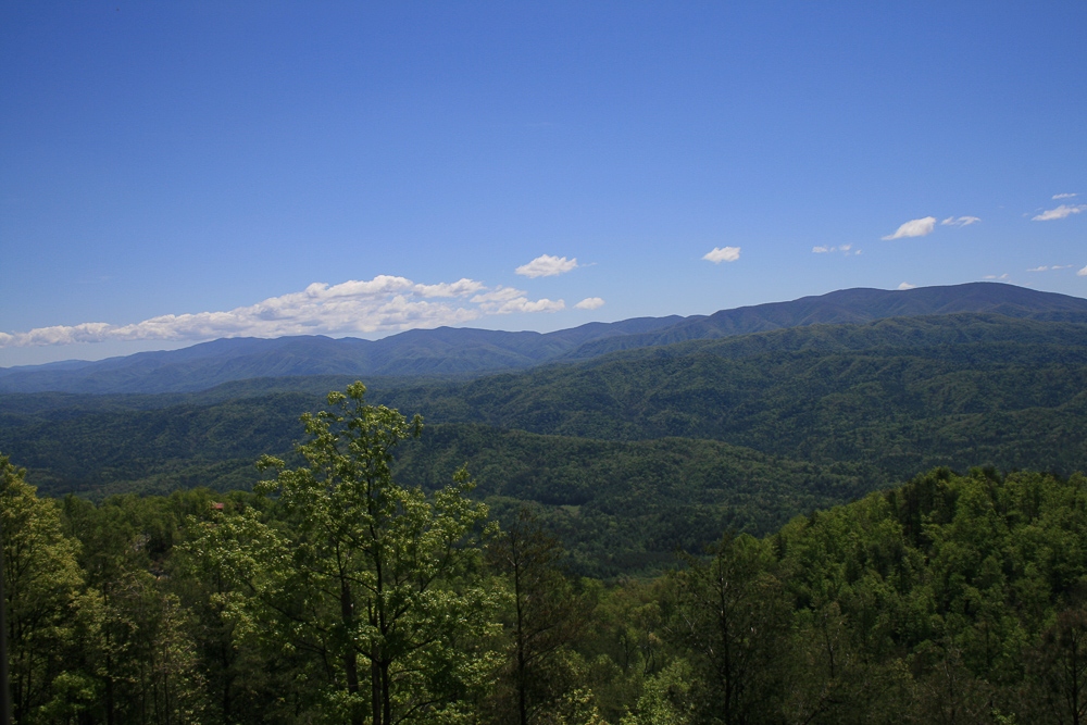 Tract 30r1 Chilhowee Mountain Tr - Photo 16