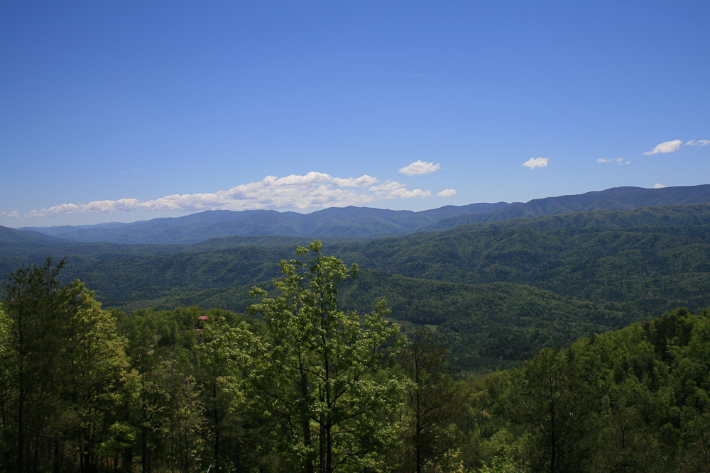 Tract 30r1 Chilhowee Mountain Tr - Photo 17