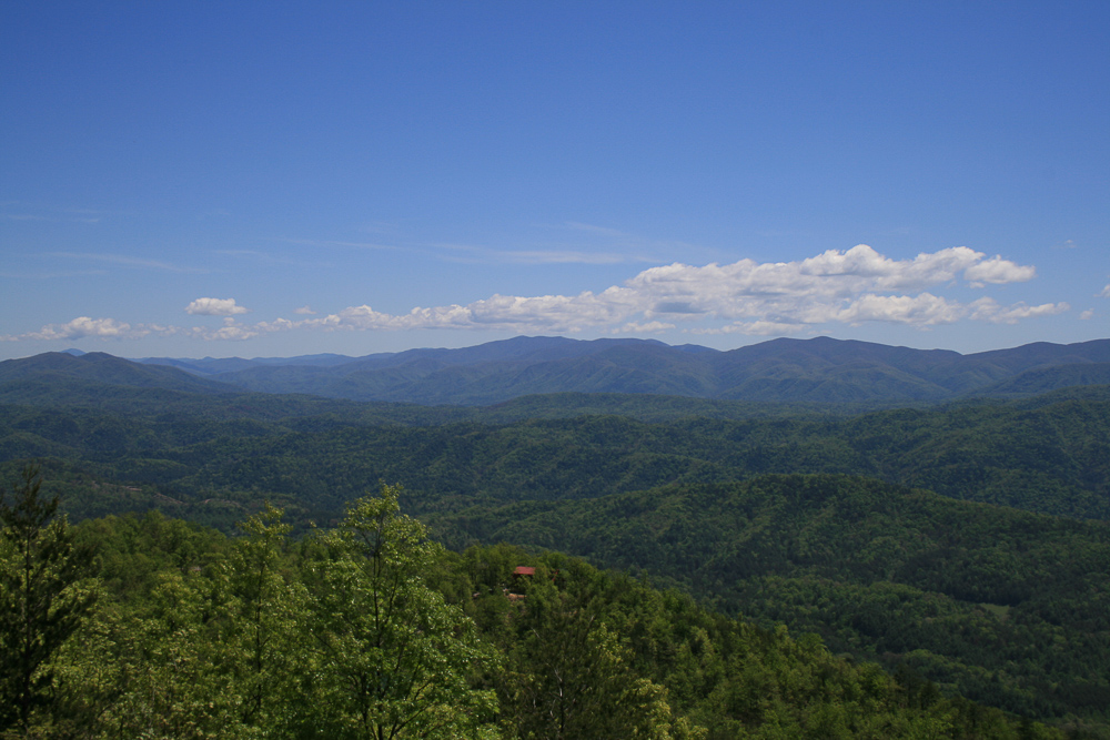 Tract 30r1 Chilhowee Mountain Tr - Photo 18