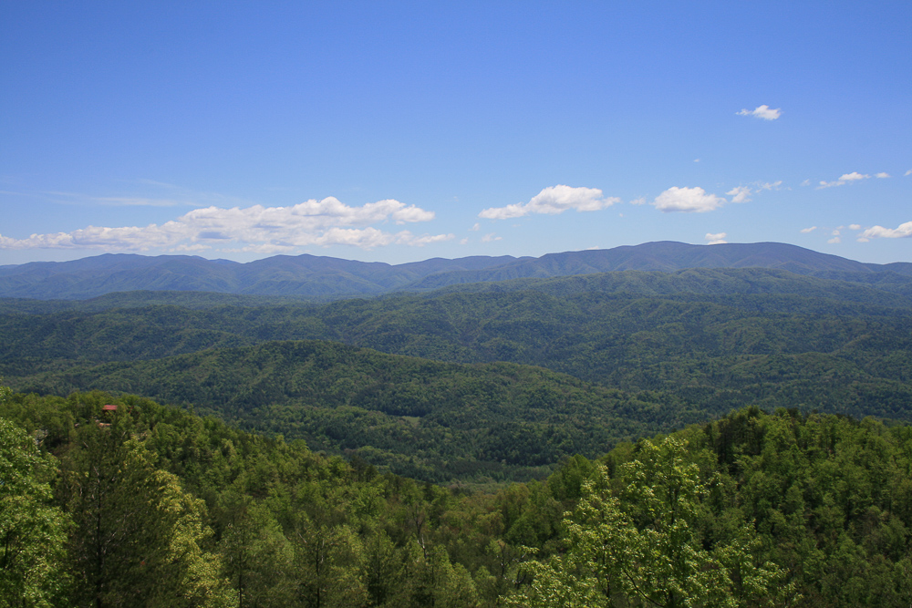 Tract 30r1 Chilhowee Mountain Tr - Photo 19