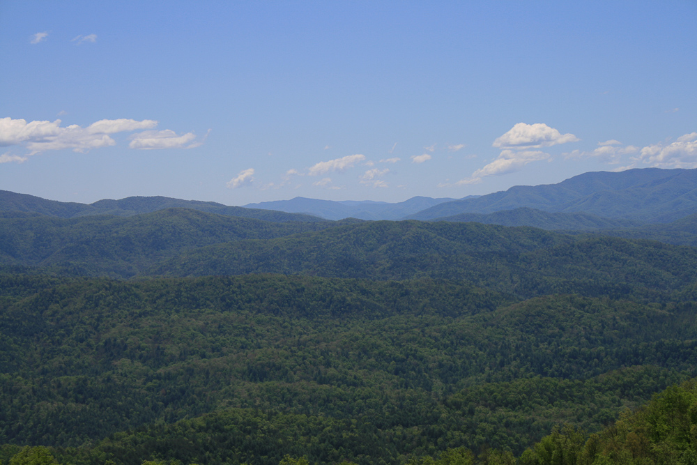 Tract 30r1 Chilhowee Mountain Tr - Photo 20