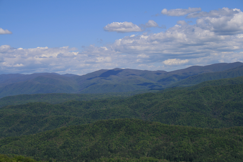 Tract 30r1 Chilhowee Mountain Tr - Photo 21