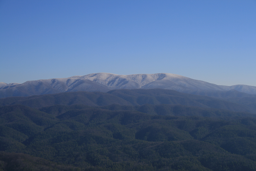 Tract 30r1 Chilhowee Mountain Tr - Photo 5