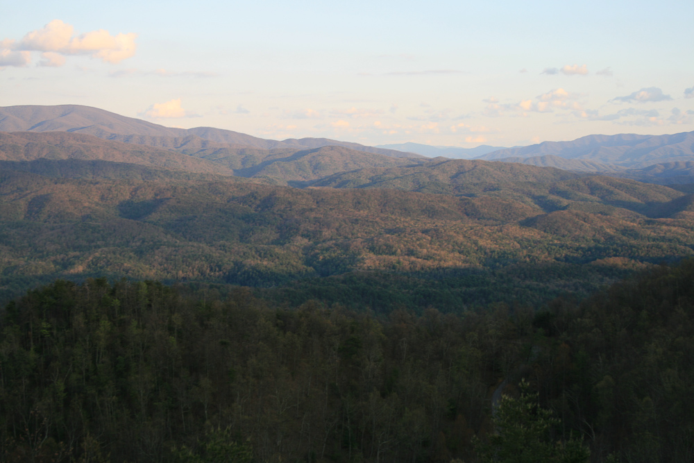 Tract 30r1 Chilhowee Mountain Tr - Photo 9